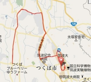 Garmin Connect -Player for Tsukuba Marathon 2009.jpg